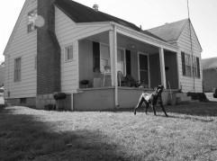 601 Davis St